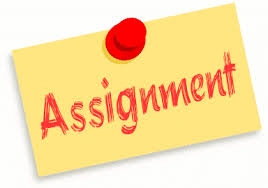 OPTIONAL ASSIGNMENTS  FOR  BREAK